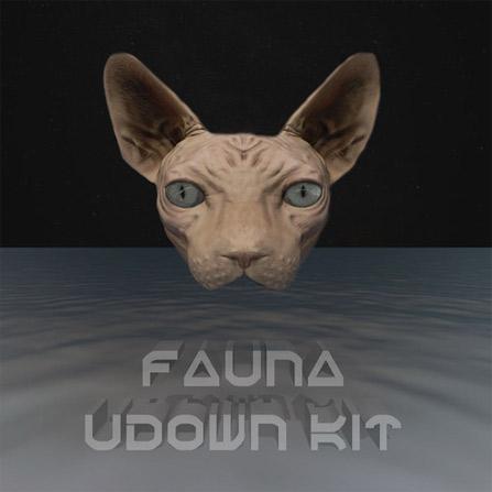 Fauna – Lower Eastside