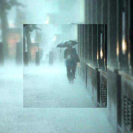 Apes – Rain